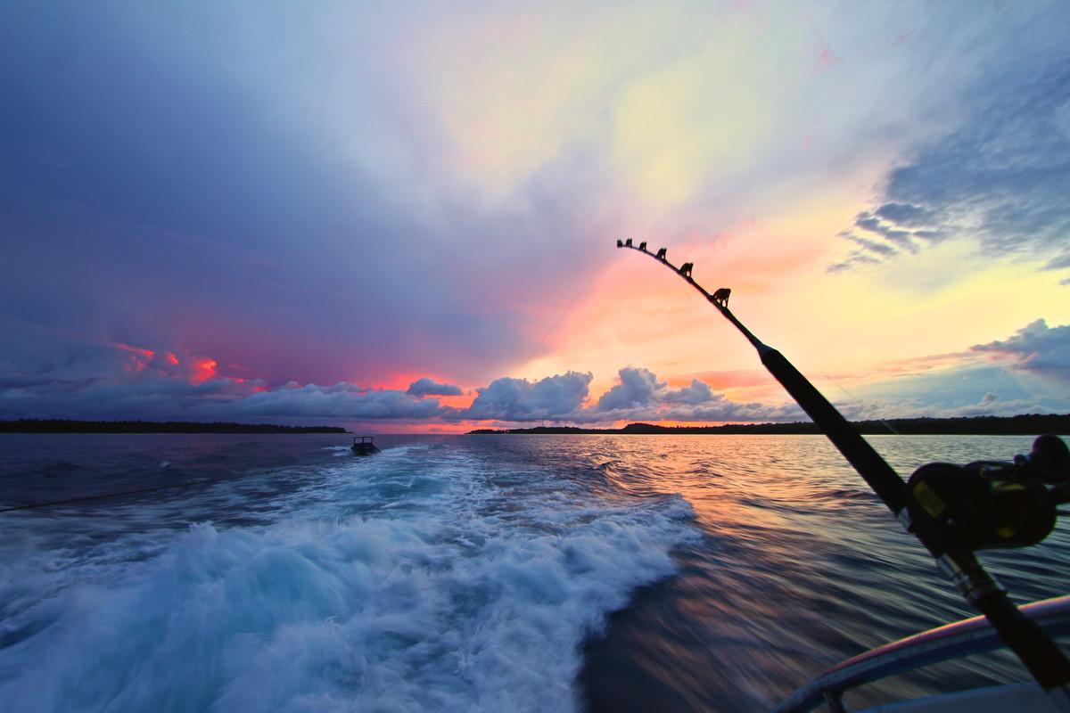 サンマを釣ろう。メインは北海道の沿岸。大群で北太平洋から南へ回遊