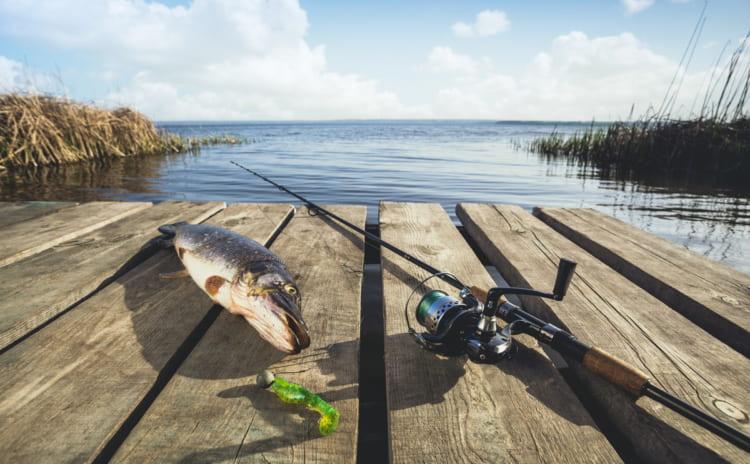 海釣りでルアーフィッシングに挑戦。おすすめのルアーと狙える獲物